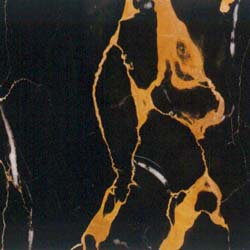 Portoro Gold Marble